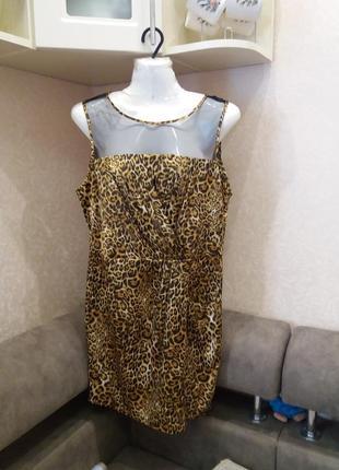 Платье  -футляр \ мини           леопринт          12\14  №4186 фото