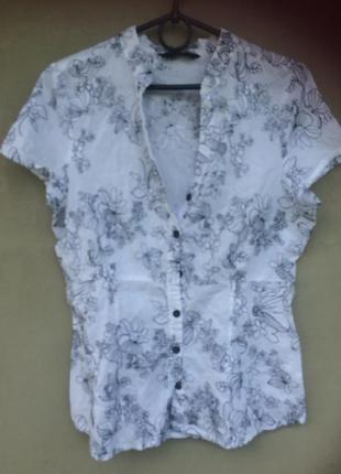 Тоненькая хлопковая блуза