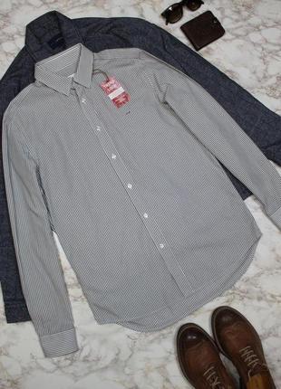 Обнова! рубашка мужская белая серая в полоску lacoste