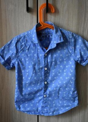 Рубашка next с коротким рукавом, принт пальмы