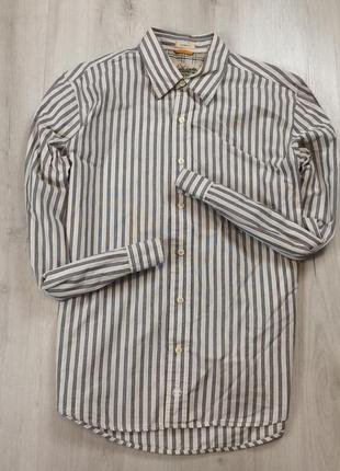 Приталенная рубашка lacoste xl мужская лакоста белая хл