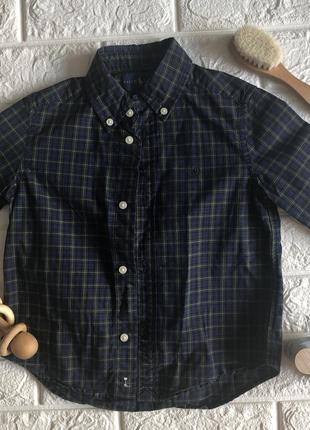 Рубашка ralph lauren 3 года