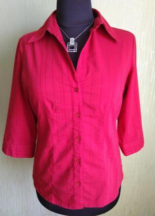 Яркая блузка из хлопка