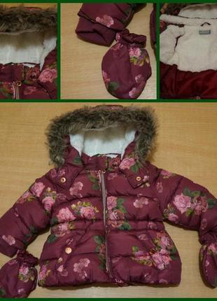 Primark демисезонная курточка с рукавицами 3-6 мес куртка