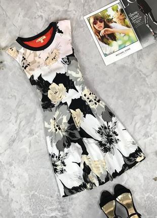 Приталенное платье с цветочным принтом  dr1925099 next