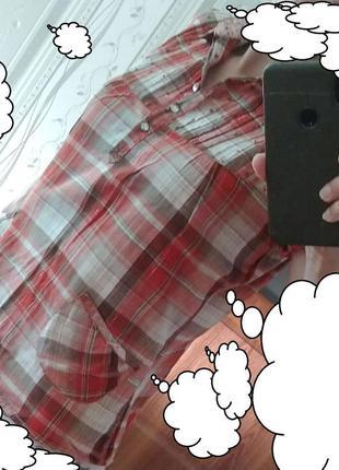 Рубашка. тенниска. футболка. хлопок