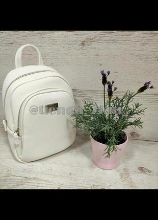 Стильный полуспортивный рюкзак david jones cm3933t белый