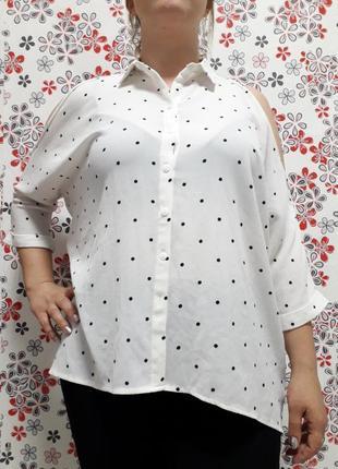 Женская блуза фирмы new look