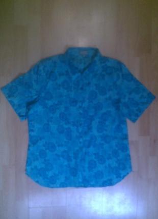 Фирменная рубашка блузка patra