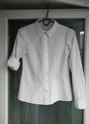 """Блузка-рубашка """"tammy"""" р.146 девочке 11л школьная белая"""