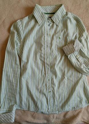 Смугата сорочка від ezra fitch