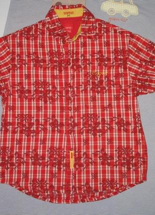 Рубашка летняя рост 128-134