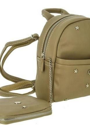 Двойной рюкзак david jones