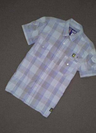 Рубашка бренда gio goi, р. м