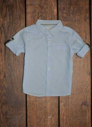 Рубашка zara 9-12 мес