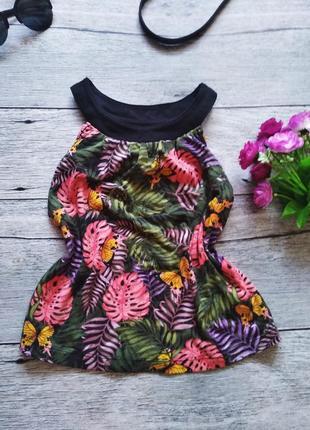 Красивый,стильный,фирменный,кроп топ,топик футболка летняя легкая майка блуза принт пальмы
