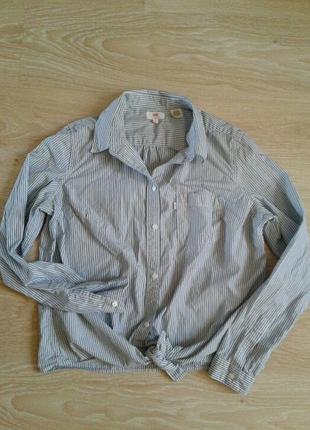 Рубашка / блуза levis