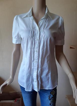 Белая рубашка простая блуза