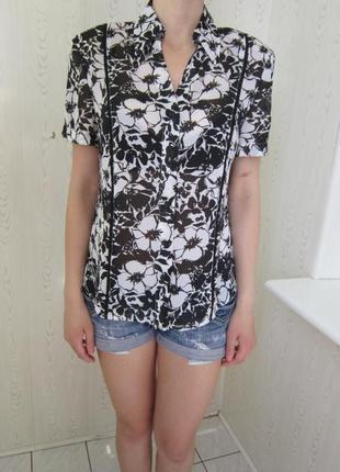 Блуза    -marco pecci-