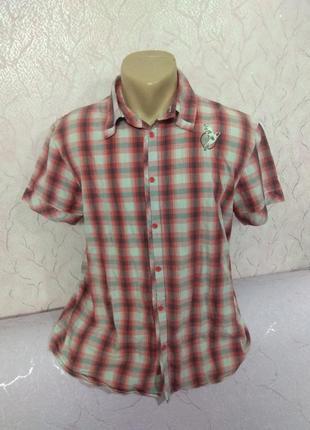 Рубашка хлопок diesel7 фото