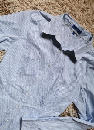 Хлопчатая рубашка в мелкую полоску полосатая