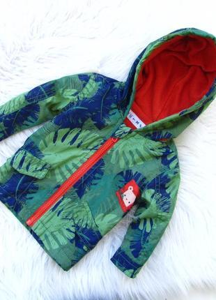 Стильная ветровка куртка с капюшоном nutmeg