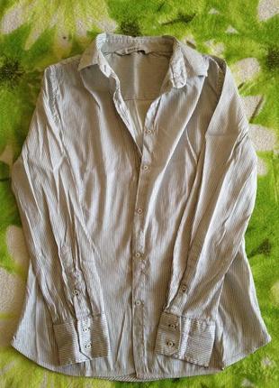 Рубашка в мелкую полоску zara