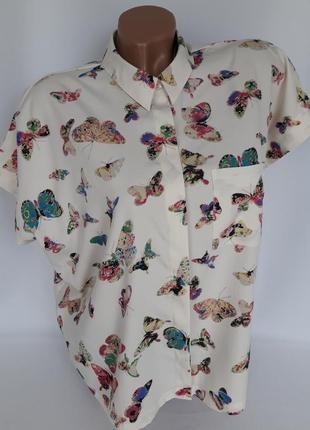 Рубашка в бабочки