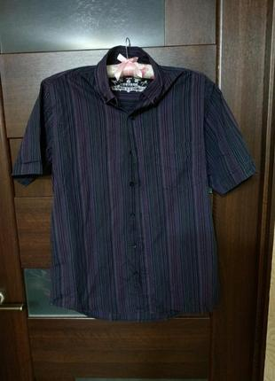 Рубашка с коротким рукавом новая