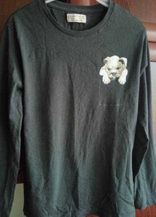Хлопковый реглан кофта футболка принт собачка