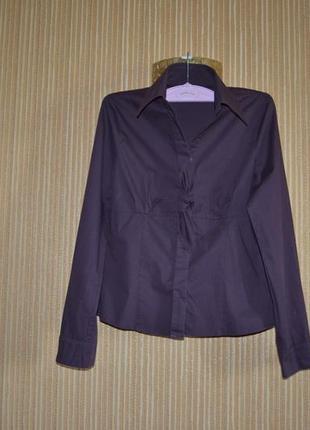М/38/10 деловая, офисная рубашка trend one