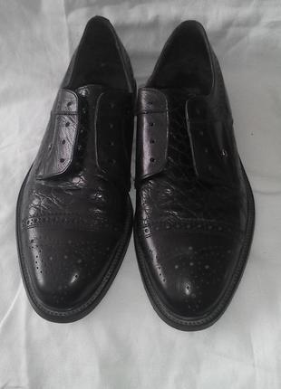 Туфлі чоловічі шкіряні фірмові пєр карден