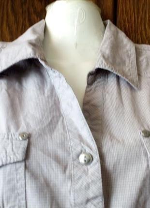 Рубашка --cecil---xl6 фото