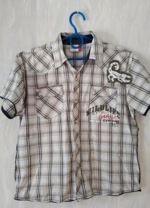Рубашка котон-распродажи