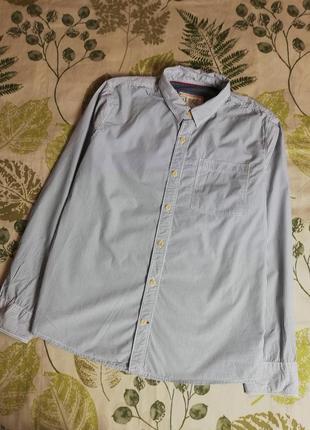 Фирменная крутая рубашка в полоску fat face 100% коттон