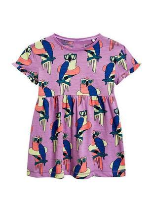 Хлопковое платье 2-3 года 98 см некст с попугаями next