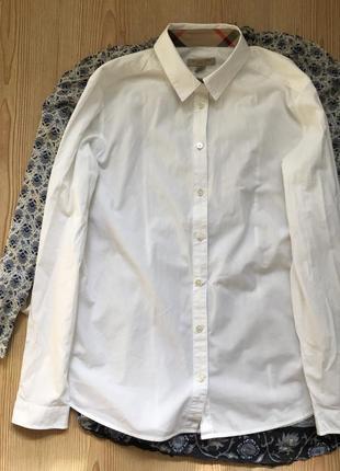 Класична біла сорочка burberry brit на довгий рукав прямого крою