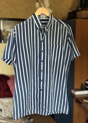 Мужская рубашка в полоску с коротким рукавом