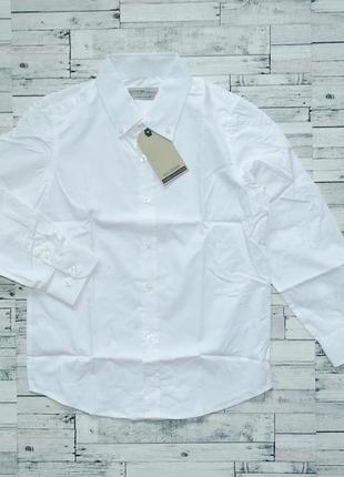 Рубашка для мальчика glo-story