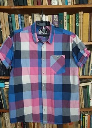 Коттоновая рубашка с коротким рукавом_шведка_батал