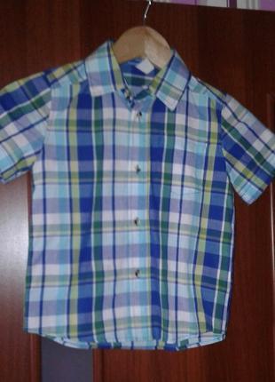 Рубашка с коротким рукавом, шведка gee jay 4/5 лет 110 см