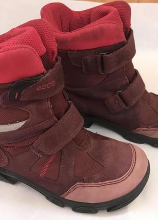 Зимние сапоги , ботинки детские , термо , ecco , 33 размер