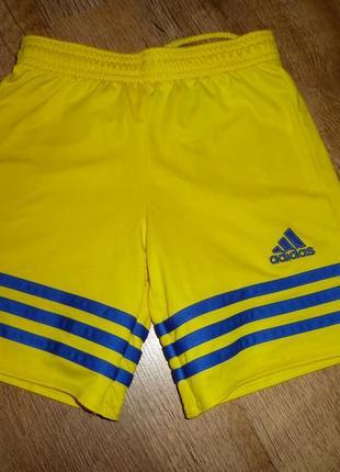 Спортивные шорты adidas, оригинал, на 7-8 лет  с серийным номером