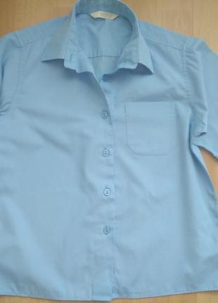 Рубашка голубая с коротким рукавом 134 см