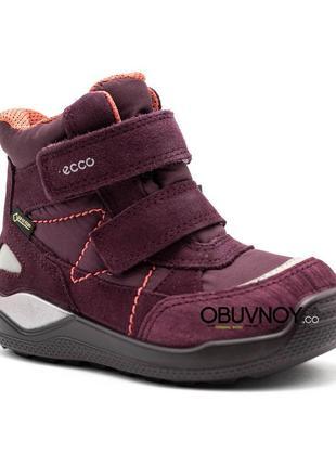 Ecco urban mini с gore - tex - зимние ботинки