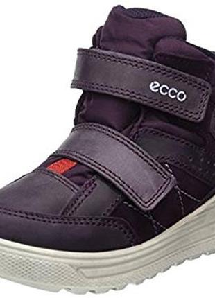 Ecco urban snowboarder gore - tex - зимние ботинки