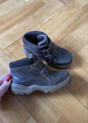 Кожаные ботинки кларкс размер 25