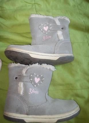 Осеннь зима ботинки сапожки полусапожки геокс