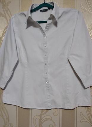 Рубашка офисная с коротким рукавом