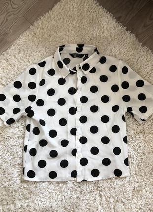 Блузка new look подростковая в горошек